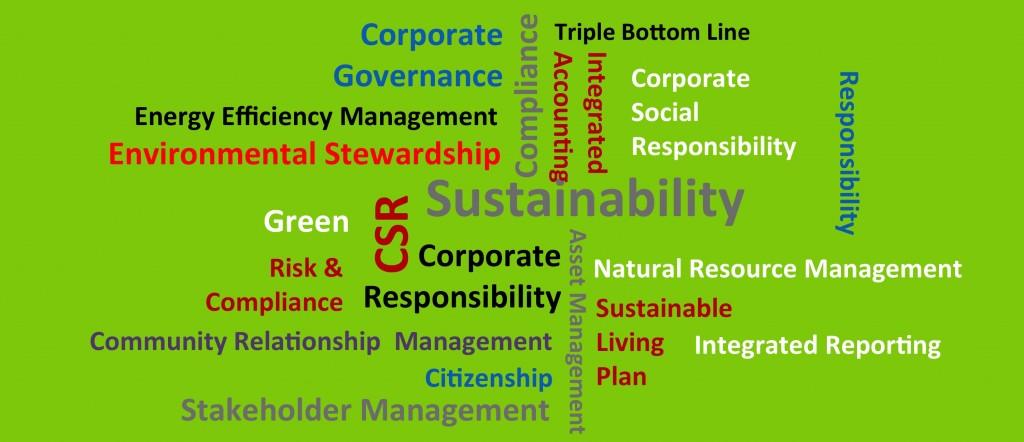 Sustainability Wordle - 2014